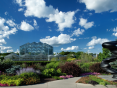 Almost Home: Grand Rapids in Focus, Frederik Meijer Gardens & Sculpture Park